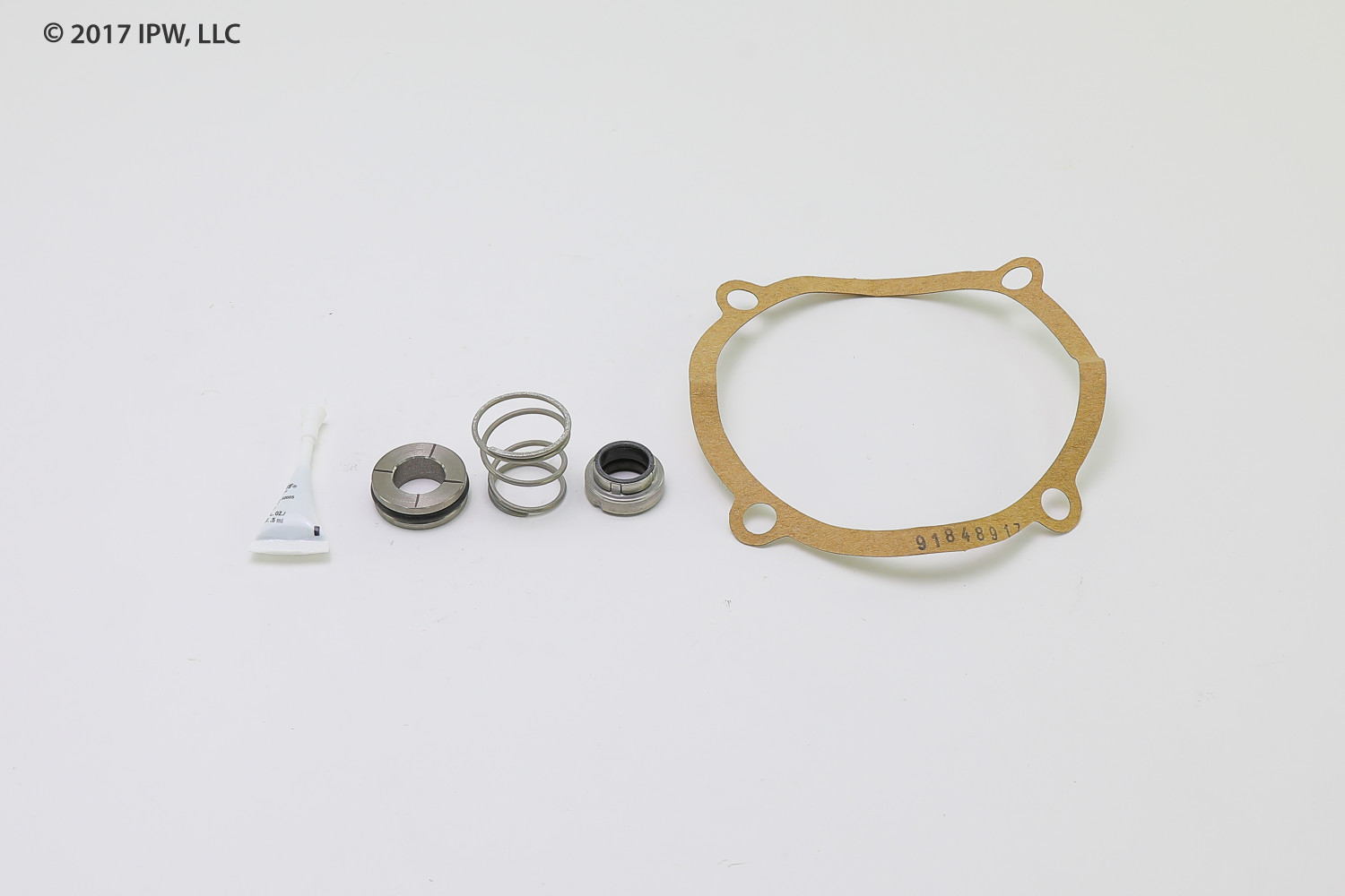 PACO Pump 91909687 K100-7 SEAL KIT