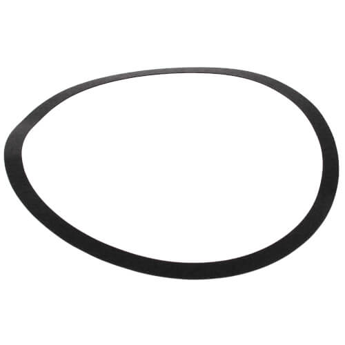 ARMSTRONG 106592-000 Body Gasket for S69-BF1 Pump